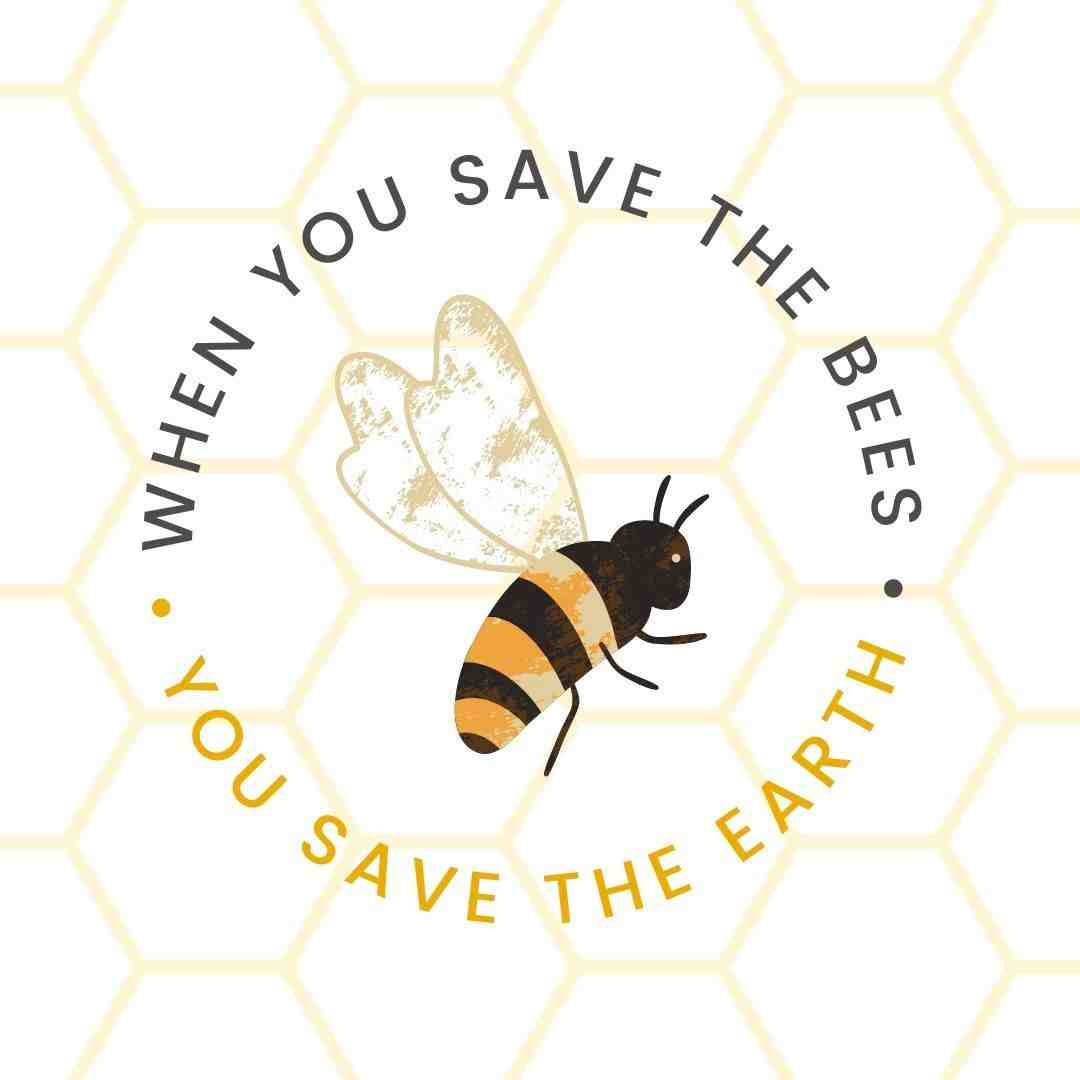 World Bee Day Canva Template + 60+ May Social Media Ideas - Images, Videos, GIFs and more!